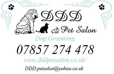 Dog Grooming Brighton