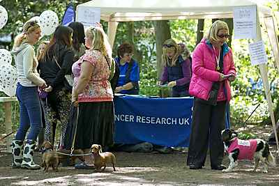 Best Paw Forward Sponsored Dog Walk in Aid of Cancer Research UK
