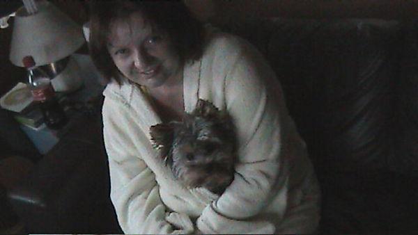 Yorkie loving a cuddle