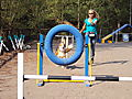 photo thumbnail Tyre Jump at Agility